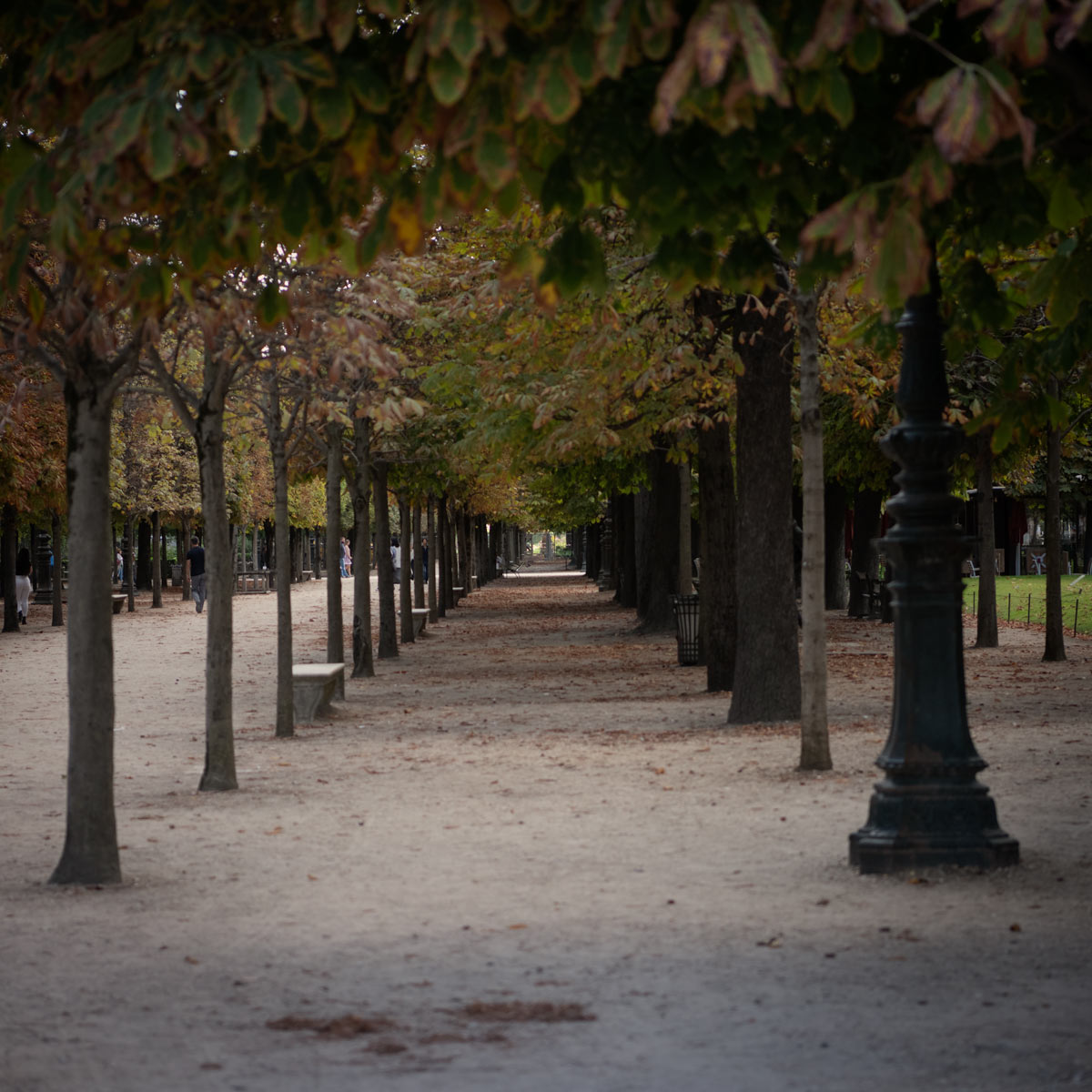 Champ de Mars Park, Paris France