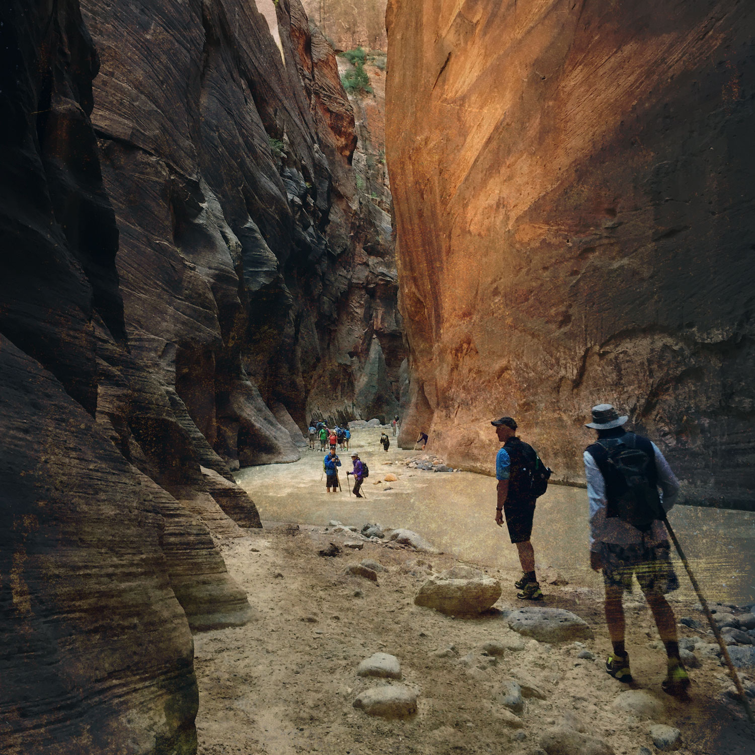 ZION - THE NARROWS